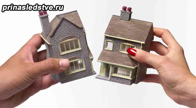 Две части домика в руках человека