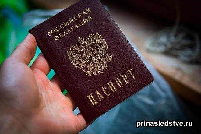 Человек держит свой паспорт