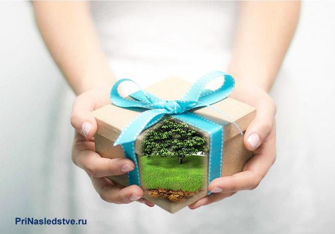 Девушка в белом платье держит подарок