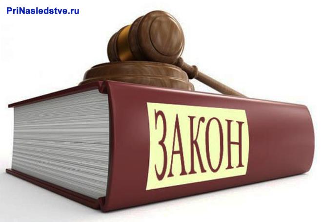 Книга о законе, молоточек судьи