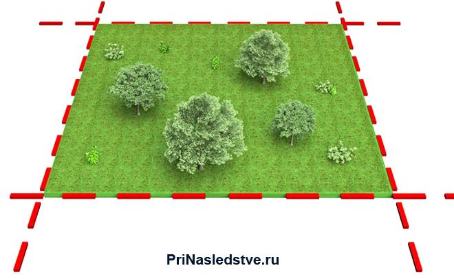 Границы земельного участка