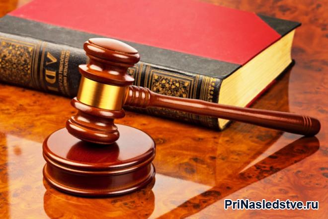 Красная книга и молоточек судьи
