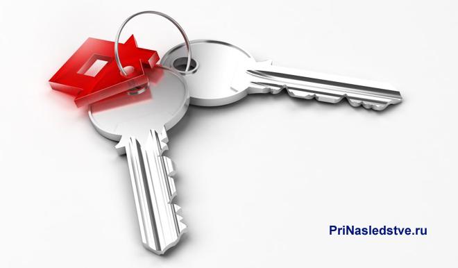 Связка из двух ключей с брелком в виде красного домика