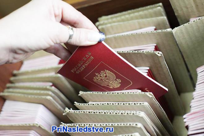 Девушка достает паспорт