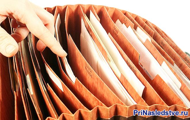 Девушка ищет документы в папках