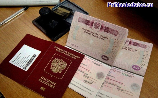 Раскрытые паспорта