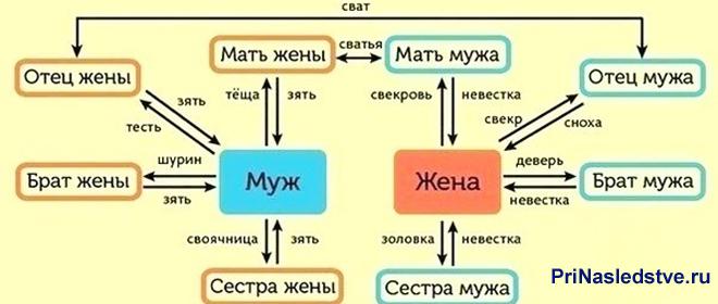 Схема родственных связей