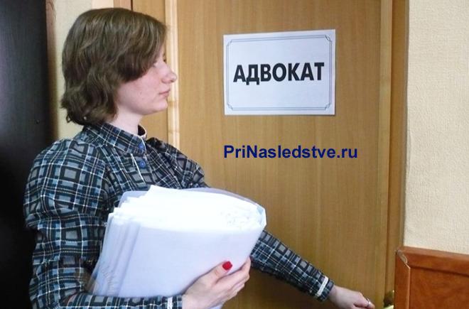 Девушка с документами в руках заходит в кабинет к адвокату