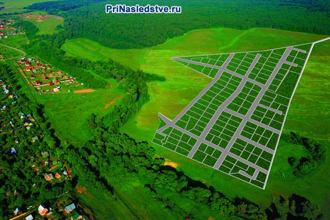 Зеленые поля