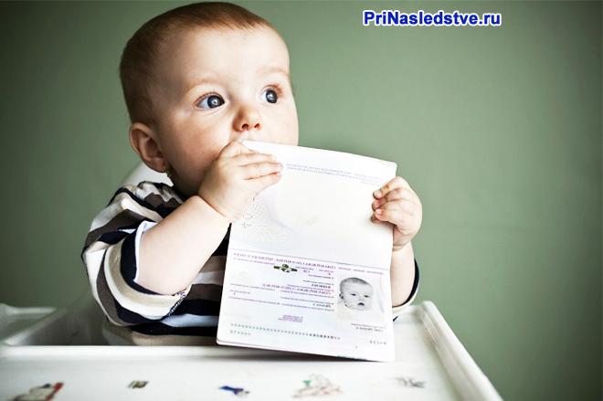 Грудничок держит в руках документы