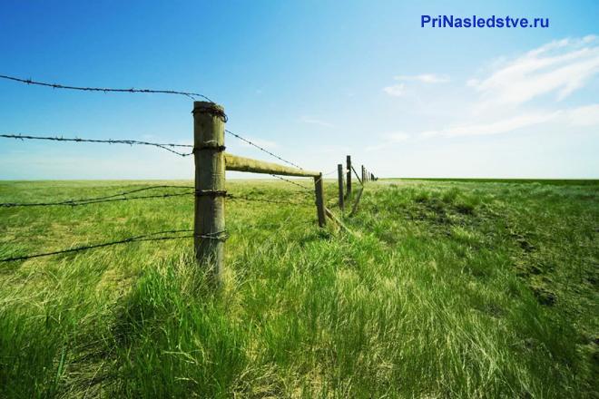 Ограда в поле