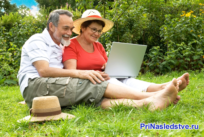 Пенсионеры-дачники сидят за ноутбуком на лужайке