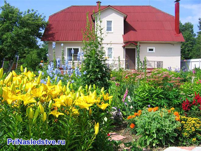 Цветы перед загородным домом